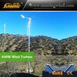 Generatore di turbina di campeggio del vento della Cina per il sistema di energia solare del vento (max 600W)
