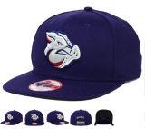 フラットつばの野球の帽子スナップバックスポーツキャップ