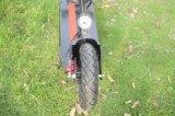 2つの荷車引きが付いているアルミニウム小型電気バイク