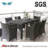 Garden Furniture Rattan/Rattan Furniture Set (ES-OL045)
