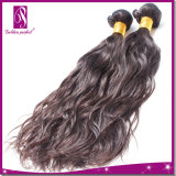 Direkte Menschenhaar-Fabrik-natürliches Wellen-Jungfrau-Haar