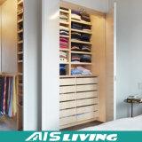 [أمريكن] مشروع غرفة نوم خزانة ثوب مقصورة تصاميم ([أيس-و038])