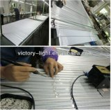 T8 Double Row Integrated 8FT LED Tube Light