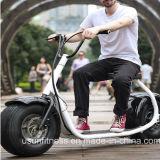 Motorino elettrico Harley del ciclomotore della grande rotella con la batteria di litio