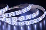 12V BOBINA LED SMD2835 Streifen-Beleuchtung des Dekoration-Gebrauch-LED