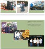 베스트셀러를 위한 중국 70kw Biogas Genset