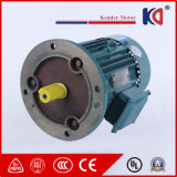 IP55 50Hz/60HzAC Elektrische Motor Met geringe geluidssterkte