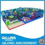 Verzinkte Stahlrohr Indoor-Spielplatz (QL-3058D)