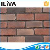 Pietra del mattone: Superficie irregolare della natura per la decorazione (YLD-10062)