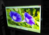 Weiße Projektions-Folie, hintere Projektions-Bildschirm-Folie, Projektor-Bildschirm-Film