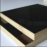 까만 Film Faced Plywood 또는 Marine Wood