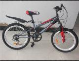 2016 heißes Sell Afrika Children Bicycle Kids Bike in Algerien