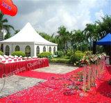 Tente extérieure de chapiteau de Gazebo de jardin en vente chaude