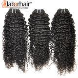 Выдвижение Lbh 117 человеческих волос естественной Kinky курчавой девственницы 100% бразильское