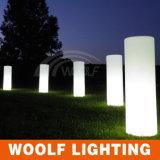 Colonna gonfiabile calda di vendita LED