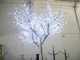 Het openlucht Licht van Kerstmis van de Kerstboom Lichte