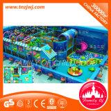 Structure vilaine de cour de jeu de château d'enfants à vendre