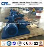 Cyyp 68 Uninterrupted Service Large Flow und High Pressure LNG Liquid Oxygen Nitrogen Argon Multiseriate Piston Pump