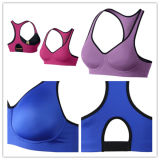 Venta al por mayor Xxx Sexy Women Sports Bra
