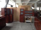 De klassieke Harde Kabinetten van de Kasten van de Esdoorn Houten