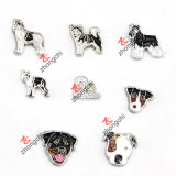 Fascini di galleggiamento Assorted del cane per la collana Pendant Jewellry (FC) del Locket