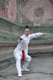 Wudang Kongfu Tai Chi 고급 긴 소매 리넨 남자의 스포츠 편한 한 벌
