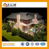 전람 모형 또는 별장 모형 또는 건물 모형 또는 Single-Family 주거 모형