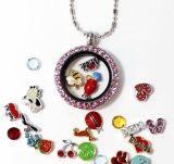 Nam de Gouden Halsband van de Juwelen van de Manier van de Tegenhanger van het Medaillon van Stenen toe