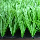 اللون الأخضر طبيعيّ يرتّب عشب اصطناعيّة