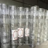 Heiße eingetauchte galvanisierte auf lagerschaf-Filetarbeit des Zaun-C8/80/15 für Großbritannien