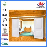 O MDF vendeu a porta de celeiro deslizante interior de madeira (JHK-SK07)
