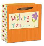 Bolsa de papel de empaquetado del regalo único brillante