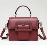 중국 공장 공급자 진짜 가죽 핸드백 형식 디자인 여자 어깨에 매는 가방 Emg5143