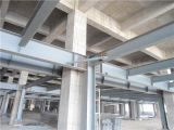 Construction d'acciaio Building con ISO9001: 2008 nel Sudamerica