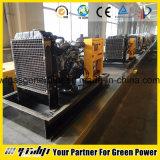 Tipo abierto del generador del gas natural (20kw a 80kw)