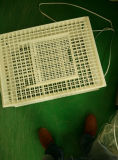 Cage de transport de poulet/caisse se pliante rotation animale