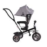 Portador ao ar livre do triciclo novo da roda das crianças 3 do projeto