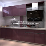 Gabinetes de cozinha modernos do estilo do abanador do produto com a despensa impermeável elevada da cozinha