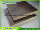 Le faisceau de bois dur film de pressage à chaud de deux fois a fait face au prix Shuttering concret de contre-plaqué