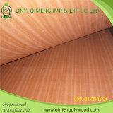 Voorzie 2.3mm Sapele Plywood van Good Quality en Price