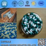 Empty hard Gelatin Capsule and Vegetable Capsule