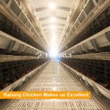 Type de H 4 cage de batterie de couche de poulet de rangée pour la ferme avicole de la Tanzanie