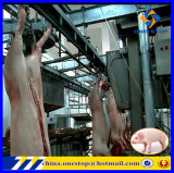 Matança Equipment Slaughtehouse Abattoir Machinery Line do porco para Pork