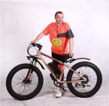 Eの脂肪質のバイク脂肪質EのバイクEのマウンテンバイク