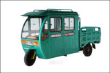 Triciclo eléctrico del triciclo eléctrico del pasajero con la azotea