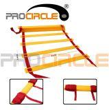 Gradino piano rapido delle scalette di agilità di addestramento di velocità di forma fisica (PC-AQ2012-2014)