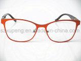 Protéger les bâtis optiques de lunetteries unisexes dernier cri de lunettes