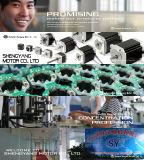 motor eléctrico servo de la CA 100W para el vehículo eléctrico (60SV100AA30C)
