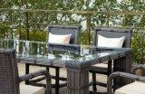 De OpenluchtEettafel van uitstekende kwaliteit van de Rotan (cns-2120)