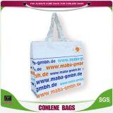 Sacchetto tessuto pp laminato lucido pp del sacchetto amichevole di Eco